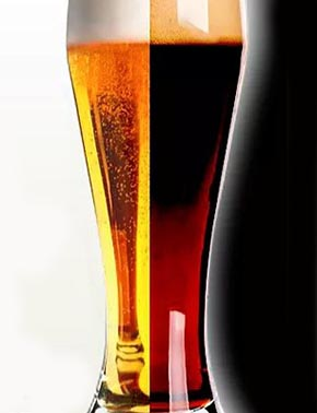 pingo bier pirachopp